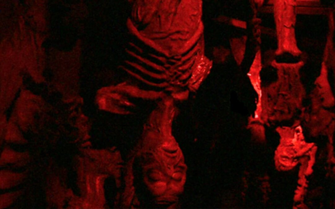 Be Afraid, Be Very Afraid at Dracula's Haunted House
