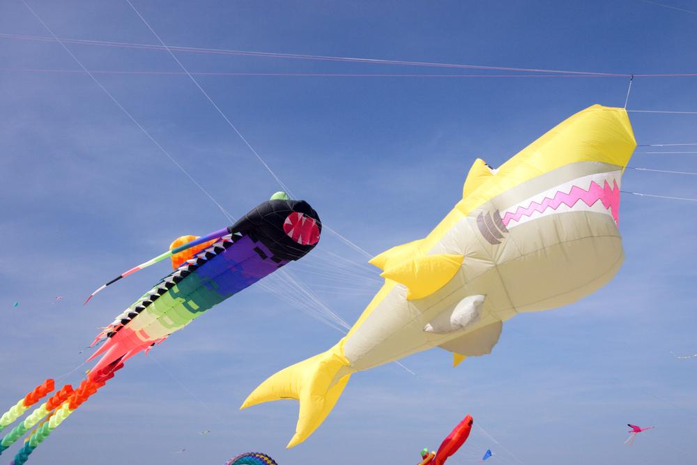 Gold Coast International Festival of Kites