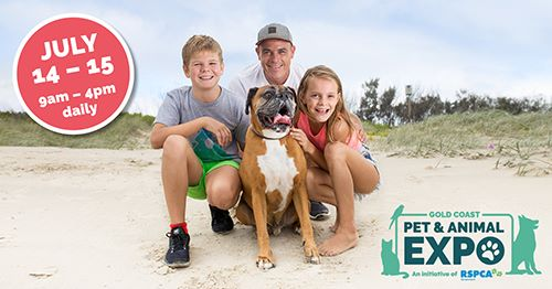 Book a Weekend Getaway at St Tropez for Gold Coast Pet Expo 2019